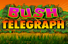 Демо автомат Bush Telegraph