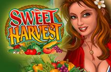Демо автомат Sweet Harvest
